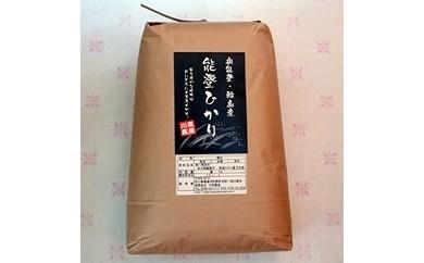 【新米】【輪島のお米】能登ひかり10kg(玄米)