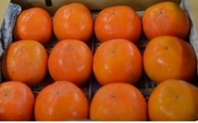 B11. 富有柿(期間限定)