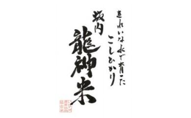 (2) 坂内龍神米(精米)5kg