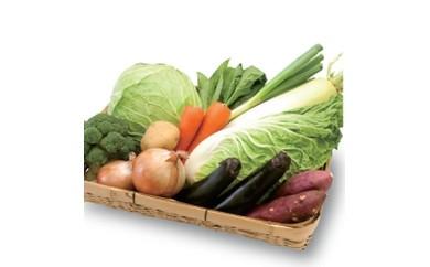 品番:4 恵那の旬の野菜 詰め合せ