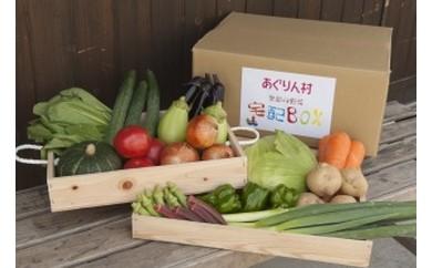 産直市場「あぐりん村」の新鮮野菜BOX