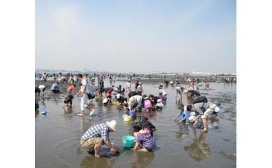L03:【週末のレジャーに】ふなばし三番瀬海浜公園 潮干狩り券