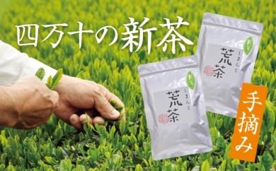 Qdr-34 【手摘みの新茶】しまんと荒茶2袋セット