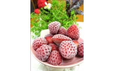 [Ba-11]Baby Berry Farmの完熟冷凍いちご2kg