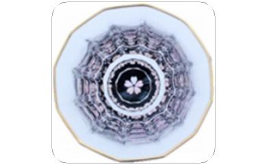D09 螺鈿ガラス 金杯(万華鏡) 桜(貝入)黒:高岡漆器