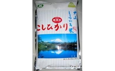 【18032】大山しらゆき米7㎏(無洗米・コシヒカリ)