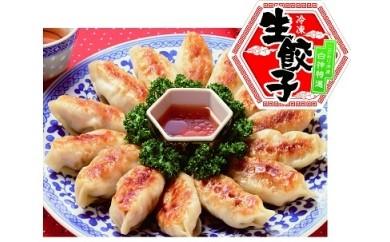 【A41】白神特選 冷凍生餃子(50個入り) ふるさと納税用特別バージョン