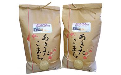 【B4】能代ふる里米10kg (秋田県産あきたこまち100%)