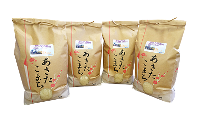 【C1】能代ふる里米20kg (秋田県産あきたこまち100%)
