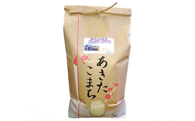 【A1】能代ふる里米5kg (秋田県産あきたこまち100%)