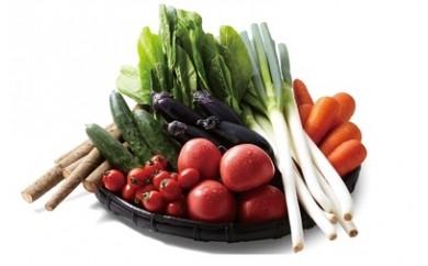 [№5674-0217]農家厳選野菜の詰め合わせ