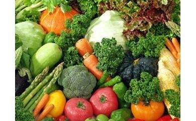 A-22 肥前の国のお野菜詰め合わせセット