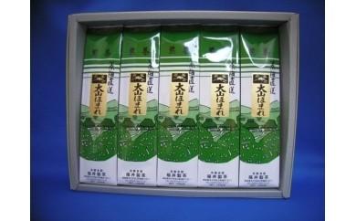 【18063】「煎茶大山ほまれ」100g5本入りセット
