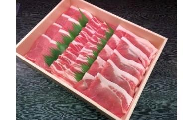 【18013】鳥取県産豚肉「ポークロゼ」焼肉セット