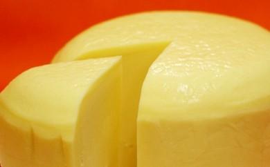 [№5863-0020]森高牧場チーズ(ゴーダタイプ)5個セット