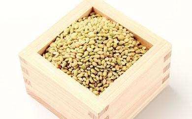 A011 明日香の古代米(緑米200g・袋入)【4,000pt】