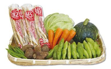 AK05 旬の野菜詰め合わせセット【10000pt】