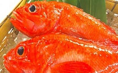 [№5809-0167]オホーツク海産最高級釣りキンキ2kg タグ付き