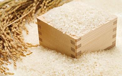 L054 石見農園「蘭越米 ゆめぴりか10kg」【16000pt】