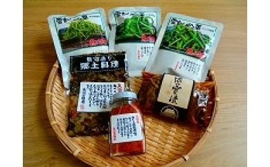 A60 友好親善市 新潟県南魚沼市 特産品 南魚沼ご飯のおかずセット