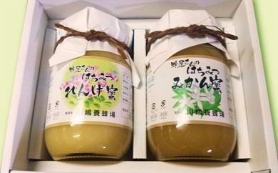 D38 ★グルメ社長の厳選お取り寄せ★蜂屋さんの天然純粋蜂蜜 れんげ蜜とみかん蜜2個入セット