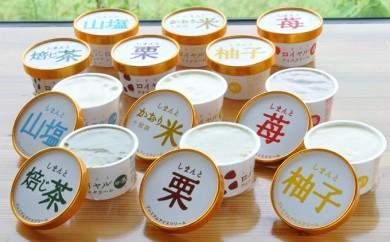 Qb-36 四万十素材の無添加プレミアムアイスクリーム 12個セット