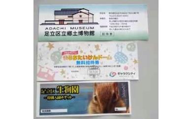 B 施設招待券(ペア)