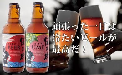 B-052 【季節限定】伝兵衛ビール・フルーツビール12本セット