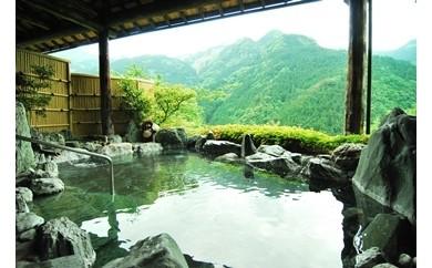 新祖谷温泉 ホテルかずら橋 平日ペア宿泊券(1泊2食付)
