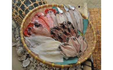 【B01】漁協自慢の干物セット(特選)