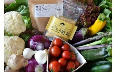 14-(12).まる弥カフェ朝どれ野菜のサラダセット