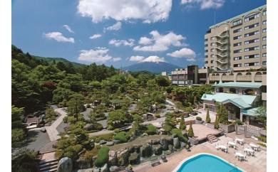 ホテル鐘山苑 日帰りご昼食・ご入浴プラン (平日ご利用 大人ペアチケット)