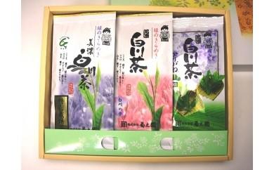 №20 菊之園 白川茶飲み比べ3本セット