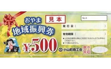 A-46 おやま地域振興券8枚