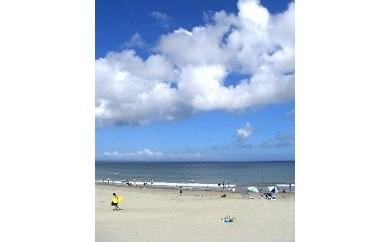 1-102 さがらサンビーチ海の家ご利用券