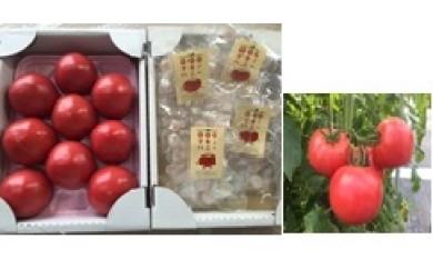 1-083 マキノハニートマトセット