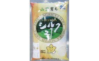 30-1 大阪エコシルク21(20kg)