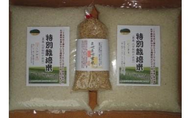 38 掛川産 こだわり米4kg+玄米3号セット