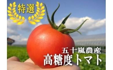 69 ☆糖度8%以上☆特選トマト(桃太郎CFファイト)2万円(平成30年産)