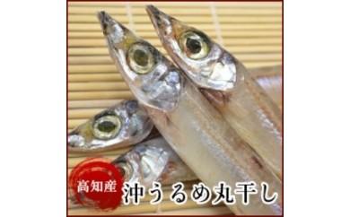 BB159 高知県産 沖うるめ丸干し(4尾)天日干し 岡岩商店【250p】
