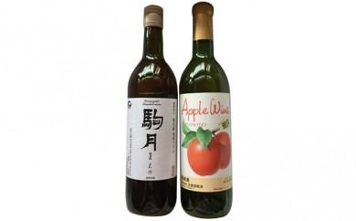 [№5865-0019]佐久のワイン 2本セット