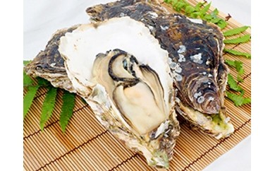 濃厚な味わい 串間産殻付 岩牡蠣(加熱用)30〜38個 B-11