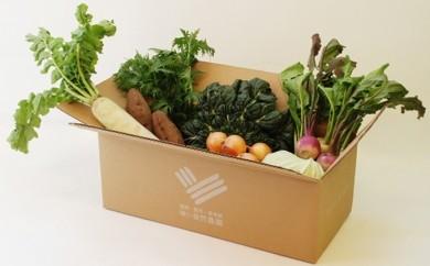 [№5865-0002]ゆいさん家の野菜セット
