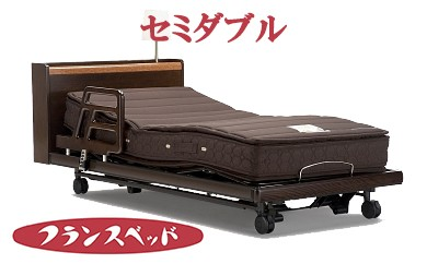 Z-1 高級感漂うリクライニングベッド