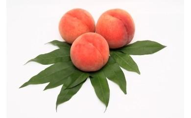 季節の果物(もも、なし、りんご、いちごから1品)
