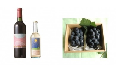 B-27安心院*小さなワイン工房 ワイン(赤・デラウエア)&ぶどう11【季節限定】