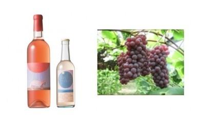 B-10安心院*小さなワイン工房 ワイン(ロゼ・ピオーネ)&ぶどう9【季節限定】