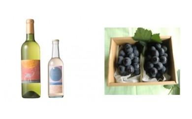 B-31 安心院*小さなワイン工房ワイン(白・ピオーネ)&ぶどう15【季節限定】