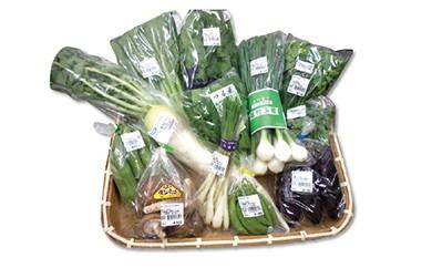 SJ02 新鮮野菜詰め合わせ(副菜用)【12,500pt】