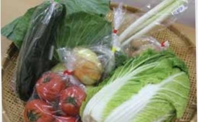 L 季節の野菜セット